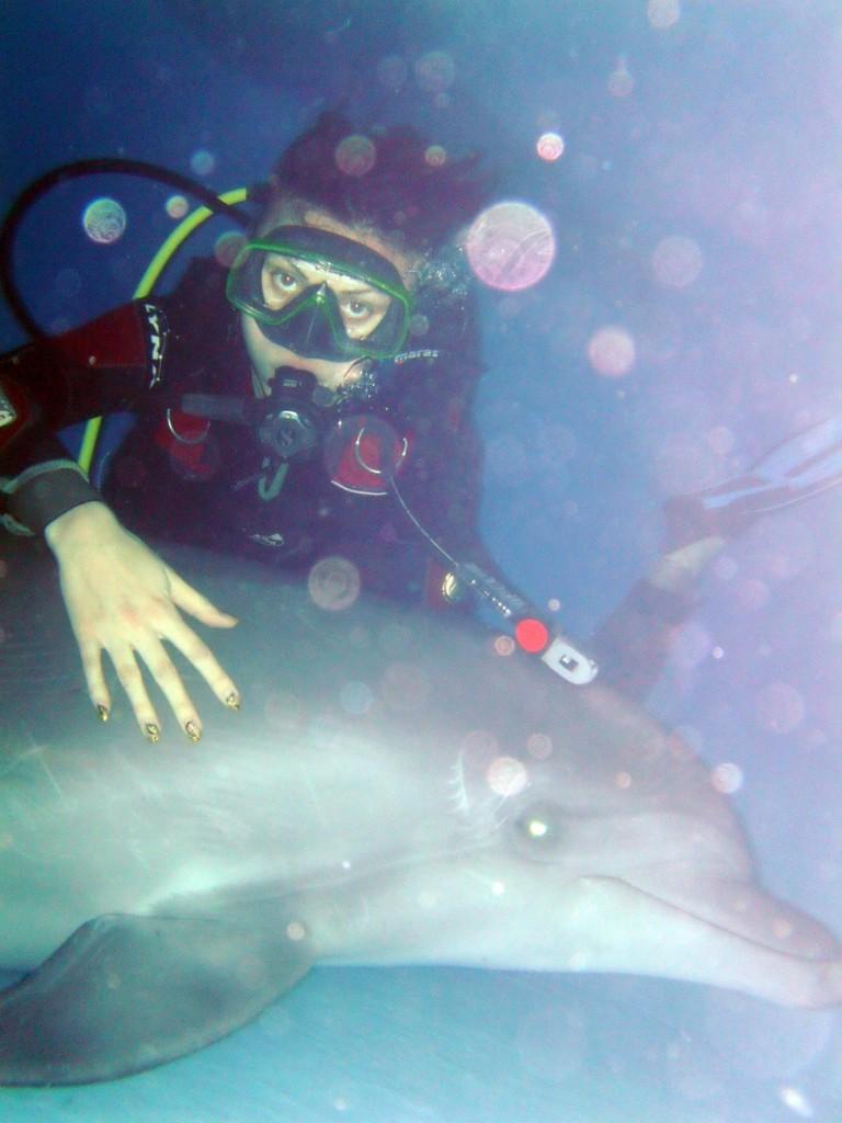 """Дайвинг с дельфинами в харьковском дельфинарии """"Немо"""""""